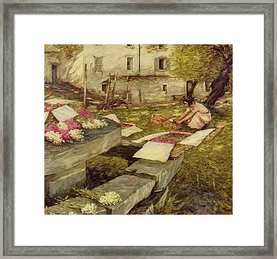 Picking Stocks Framed Print by Henry Herbert La Thangue