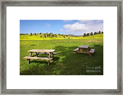 Picnic Tables Framed Print