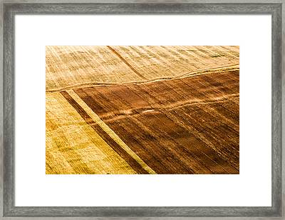 Picture Of Summer Field Framed Print by Evgeni Dinev