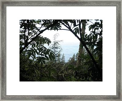 Picture Perfect Framed Print by Elizabeth  Ford