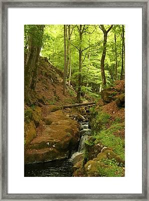 Picturesque Creek Framed Print