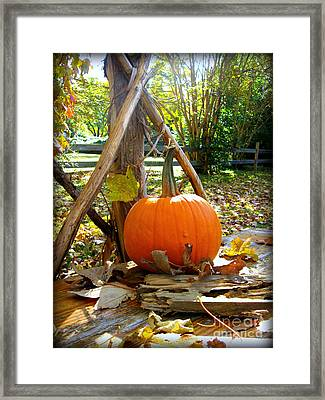 Framed Print featuring the photograph Pie by Nancy Dole McGuigan