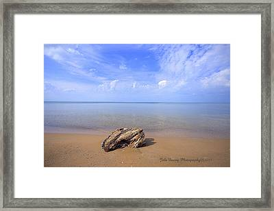 Piece Of Paradise Framed Print