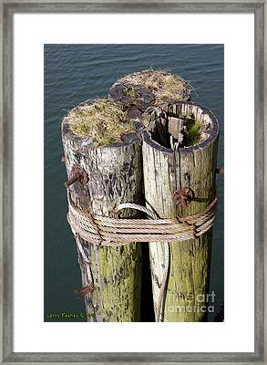 Pier Top World Framed Print by Larry Keahey
