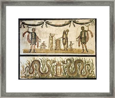 Pig Sacrifice, Roman Fresco Framed Print by Sheila Terry