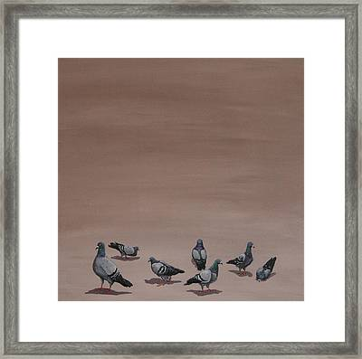 Pigeons Framed Print by Jennifer Lynch