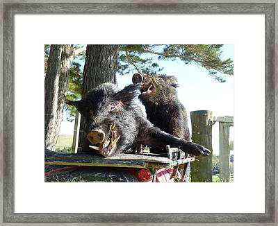 Piggy Back Smiley Hitch Hikers Framed Print by Dianne  Connolly