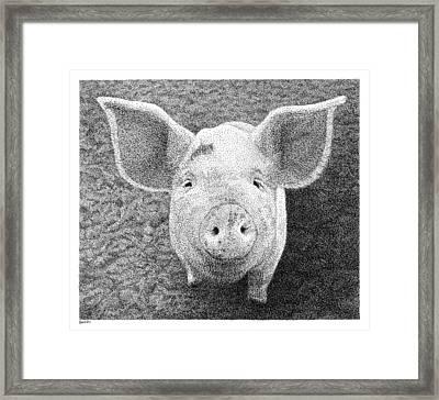 Piglet Framed Print