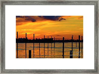 Pilings And Pelican Framed Print by Lynda Dawson-Youngclaus