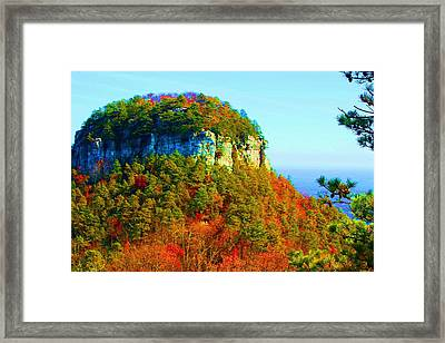 Pilot Mountain Framed Print by Bob Whitt