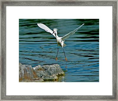 Pin Point Landing Framed Print by Stephen  Johnson
