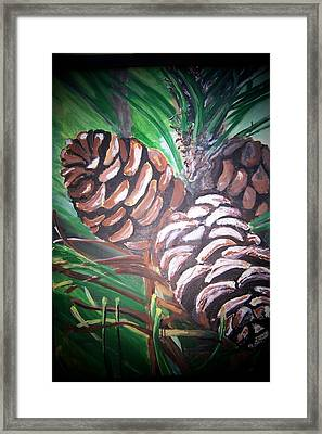 Pine Cones Framed Print by Krista Ouellette