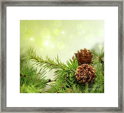 Pine Cones On Branches With Holiday Background Framed Print by Sandra Cunningham