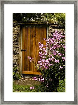 Pine Door Framed Print by Peter Jenkins