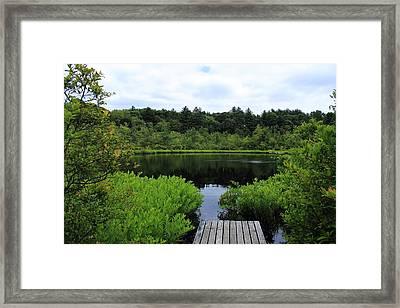 Pine Hole Pond Framed Print