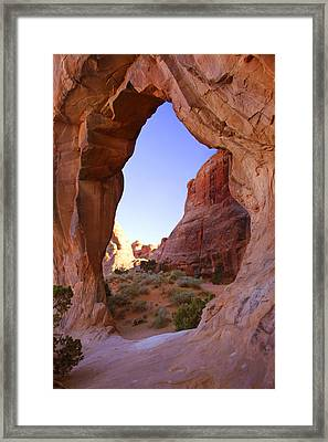 Pine Tree Arch Framed Print by Mike McGlothlen