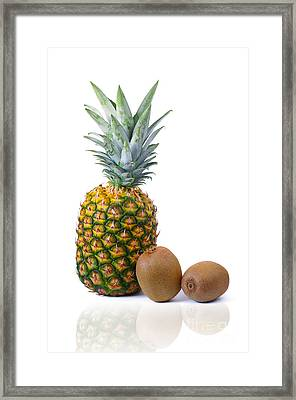 Pineapple And Kiwis Framed Print by Carlos Caetano