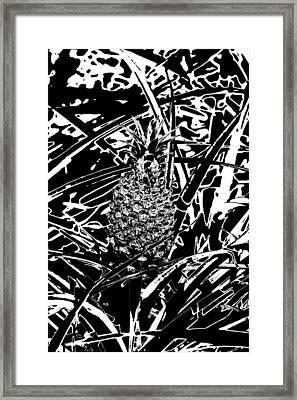 Pineapple  Framed Print by Elizabeth  Doran