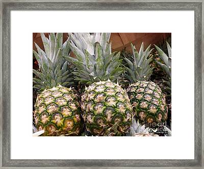 Pineapples Framed Print by Methune Hively