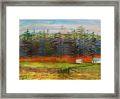Pines Behind The Barns Framed Print by John Williams