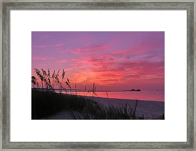 Pink And Purple Dawn Framed Print by Brian Wright