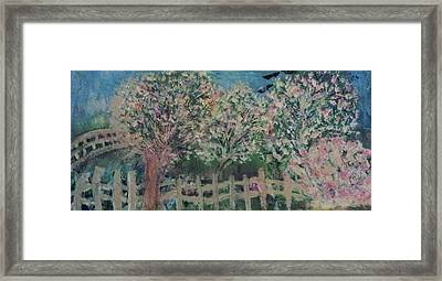 Pink And White Trees And Fence Framed Print by Anne-Elizabeth Whiteway