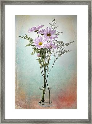 Framed Print featuring the photograph Pink Daisy by James Bethanis