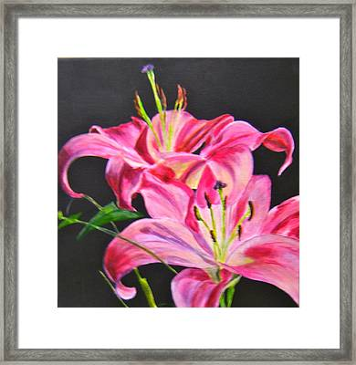 Pink Day Lilies Framed Print