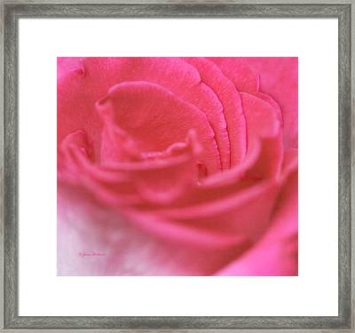 Framed Print featuring the photograph Pink Edges by Joan Bertucci