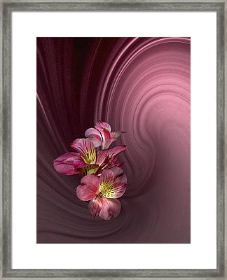 Framed Print featuring the photograph Pink Fantasy by Judy  Johnson