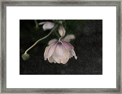 Pink Flower Framed Print by   DonaRose