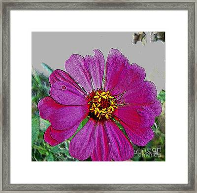 Pink Flower Framed Print by Lisa  Ridgeway