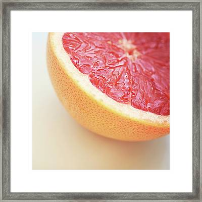 Pink Grapefruit Framed Print by Dhmig Photography