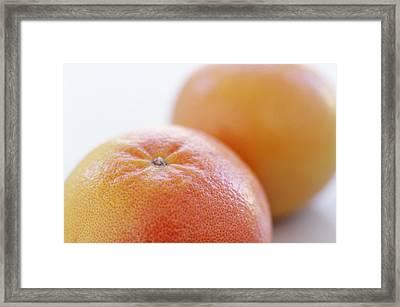 Pink Grapefruits Framed Print by David Munns