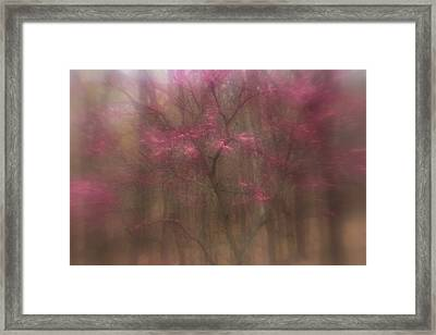 Framed Print featuring the photograph Pink Haze by Coby Cooper