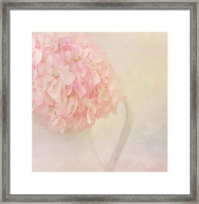 Pink Hydrangea Flowers In White Vase Framed Print by Kim Hojnacki