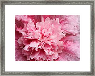Pink Framed Print by Kristin Elmquist