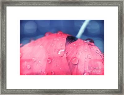 Pink Puppie Framed Print by Soultana Koleska