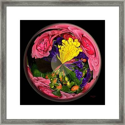 Pink Rose Globe Framed Print