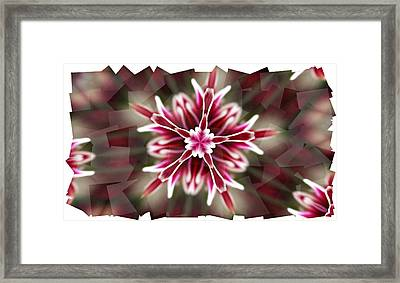 Pink Snowflake  Framed Print