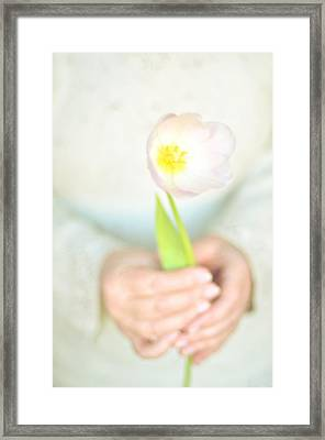 Pink Tulip In Womans Hands Framed Print by Photo by Ira Heuvelman-Dobrolyubova