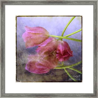 Pink Tulips Framed Print by Bernard Jaubert