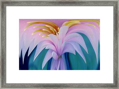 Pink Water Lily Framed Print by Pat Exum