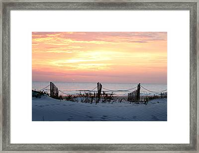 Pink Wonder Framed Print