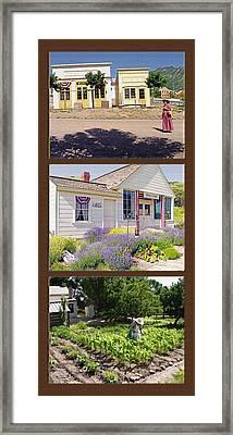 Pioneer Series Triptych Framed Print by Steve Ohlsen