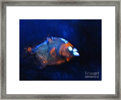 Piranha 3d  Framed Print by Robert Del-Rose