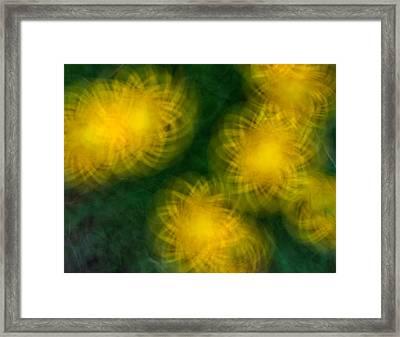 Pirouetting Dandelions Framed Print by Neil Shapiro