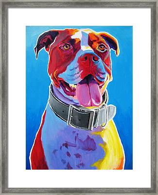 Pit Bull - Buster Framed Print by Alicia VanNoy Call