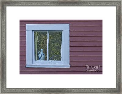 Pitcher In Window Framed Print