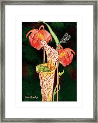 Framed Print featuring the painting Pitcher Plant With Blooms by Anne Beverley-Stamps